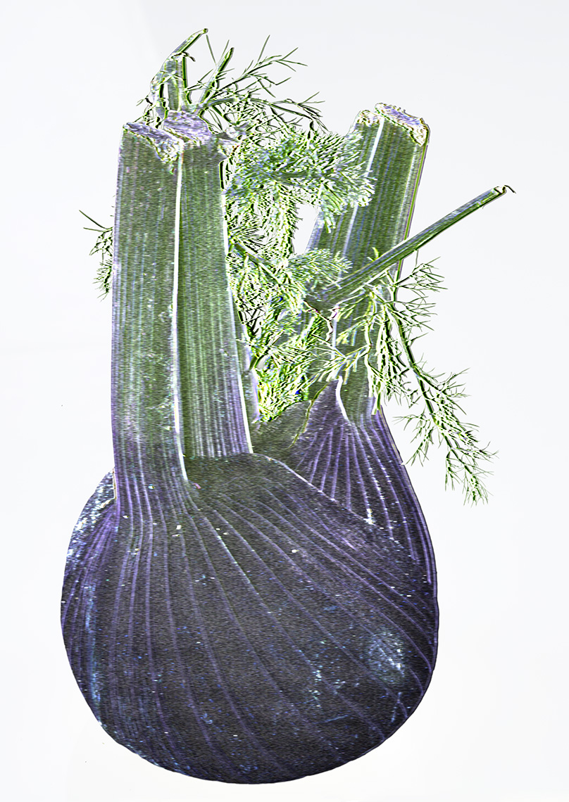 The SVD of a Fennel